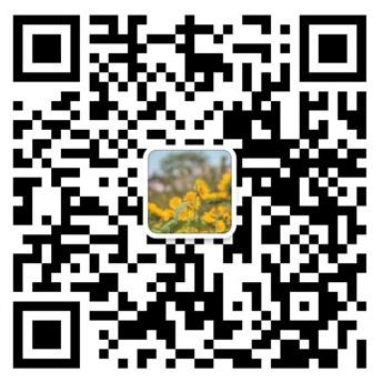 柠檬app下载